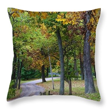 Stroll Through The Park Throw Pillow