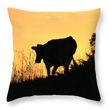 Throw Pillow featuring the photograph Strolling Into The Sunset by Penny Meyers