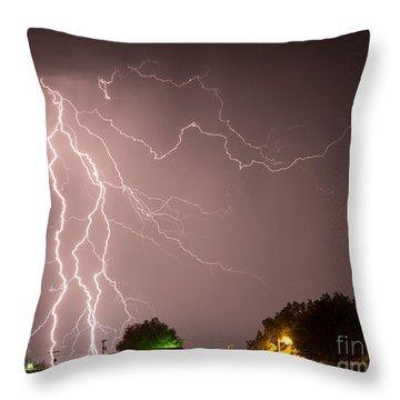 Strom At The Farm Throw Pillow
