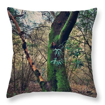 Strong Enough To Hold You Throw Pillow by Laurie Search