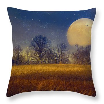 Struck By The Moon Throw Pillow