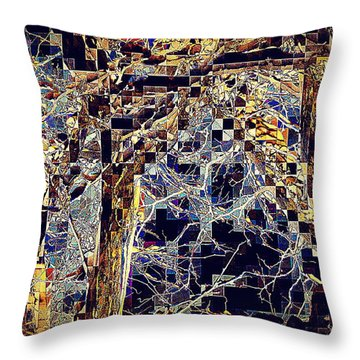 Throw Pillow featuring the photograph Structure by Jodie Marie Anne Richardson Traugott          aka jm-ART