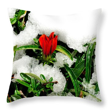 Struggling Under Ice Throw Pillow