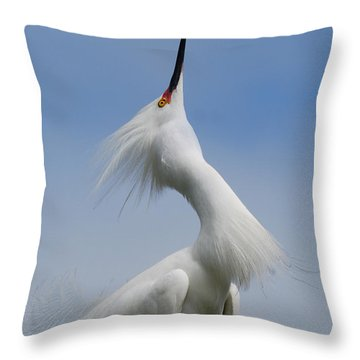 Strut Yer Stuff Throw Pillow by Skip Willits