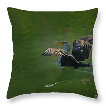 Strutting Cormorant Throw Pillow