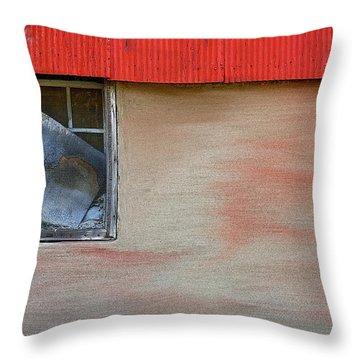 Stucco Flow Throw Pillow