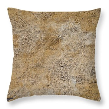 Stucco Wall Throw Pillow by Hans Engbers