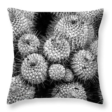 Study In Spines 1 Throw Pillow
