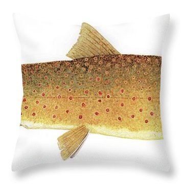 Throw Pillow featuring the painting Study Of A Bull Trout by Thom Glace