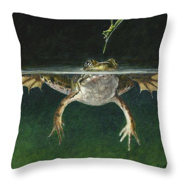 Study Of A Grasshopper Throw Pillow