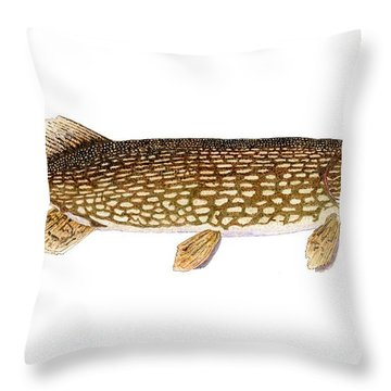 Throw Pillow featuring the painting Study Of A Northern Pike by Thom Glace