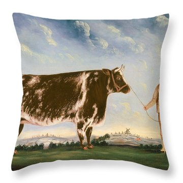 Study Of A Shorthorn Throw Pillow by William Joseph Shayer