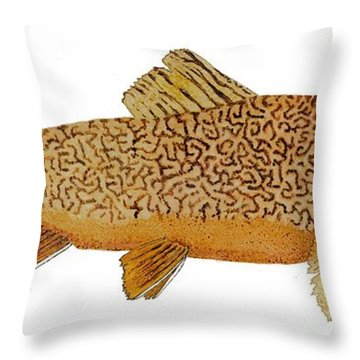 Throw Pillow featuring the painting Study Of A Tiger Trout by Thom Glace