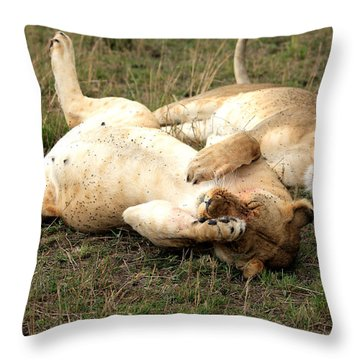 Stuffed Throw Pillow