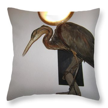 Stuffed Bird Throw Pillow