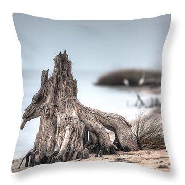 Stump Dragon Throw Pillow by Joan McCool