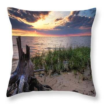 Stumps And Sunset On Oyster Bay Throw Pillow