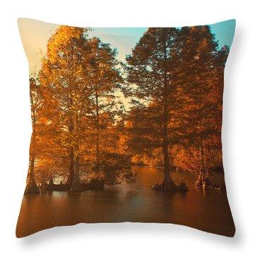 Stumpy Sunset Throw Pillow