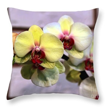 Stunner Throw Pillow by Teresa Zieba