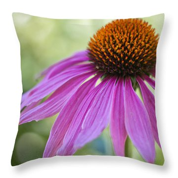 Stunning Beauty Throw Pillow by Heidi Smith