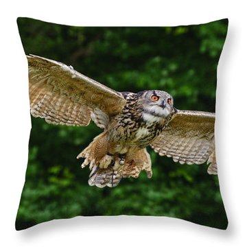 Stunning European Eagle Owl In Flight Throw Pillow by Matthew Gibson