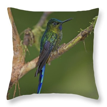 Stylish Hummer... Throw Pillow by Nina Stavlund