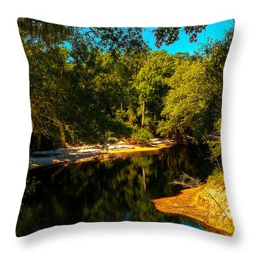 Suwannee River Banks Throw Pillow