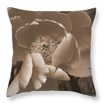 Subdued  Throw Pillow