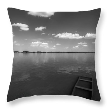 Submerged Throw Pillow by Davorin Mance