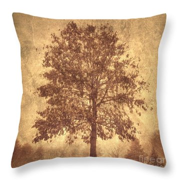Throw Pillow featuring the photograph Suburban Tree by Chris Scroggins