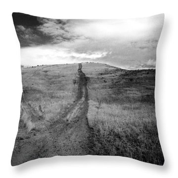 Throw Pillow featuring the photograph Succer Creek by Tarey Potter