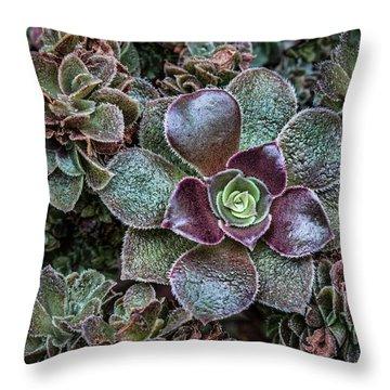 Succulent Art Throw Pillow