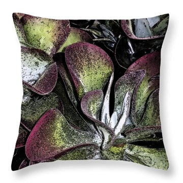 Succulent At Backbone Valley Nursery Throw Pillow by Greg Reed