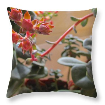 Throw Pillow featuring the photograph Succulent Blossom by Brenda Pressnall