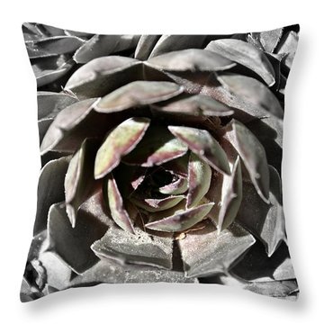 Throw Pillow featuring the photograph Succulent by Henry Kowalski