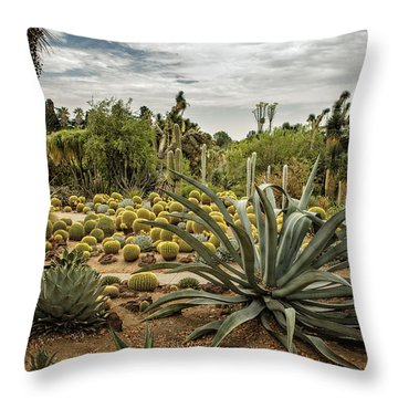 Throw Pillow featuring the photograph Succulents At Huntington Desert Garden No. 3 by Belinda Greb