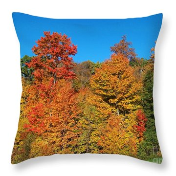 Such A Colorful Day 2 Throw Pillow