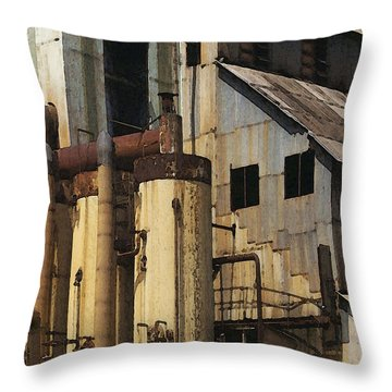 Sugar Factory Throw Pillow by David Hansen