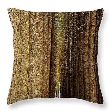 Sugar Pine Walk Throw Pillow