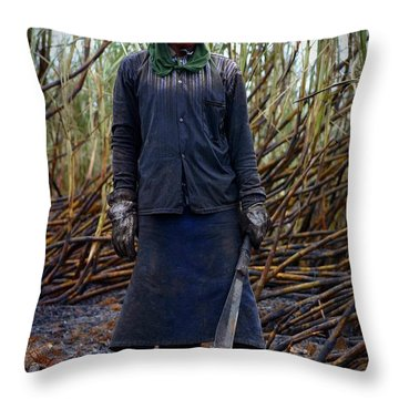 Throw Pillow featuring the photograph Sugarcane Slash by Henry Kowalski