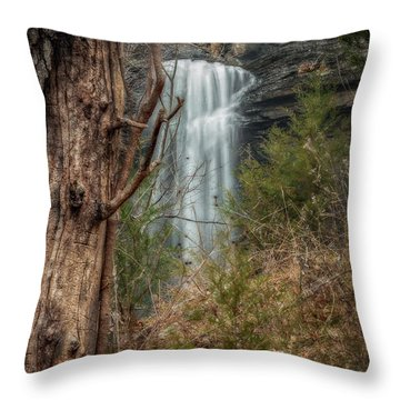 Sugarloaf Falls Throw Pillow