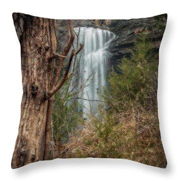Sugarloaf Falls Throw Pillow