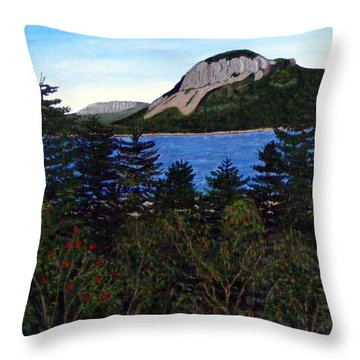 Sugarloaf Hill Throw Pillow by Barbara Griffin