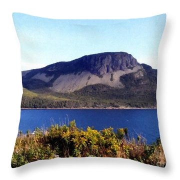 Throw Pillow featuring the painting Sugarloaf Hill In Summer by Barbara Griffin