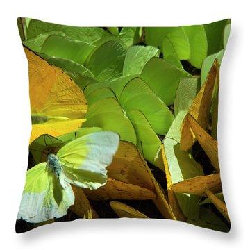 Amazon River Throw Pillows