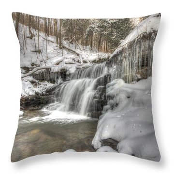 Sullivan Run Waterfall 3 Throw Pillow