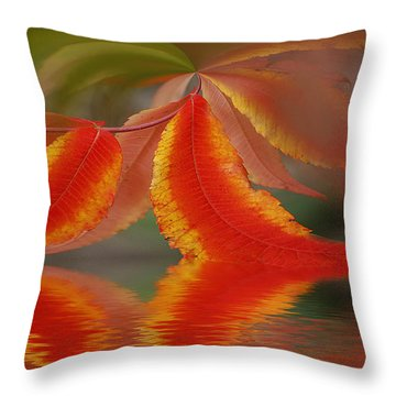 Sumach And Reflection Throw Pillow