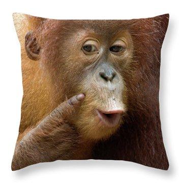 Sumatran Orangutan Baby Calling Throw Pillow by Suzi Eszterhas