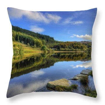Summer At The Lake Throw Pillow