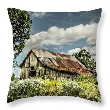 Throw Pillow featuring the photograph Summer Barn by Debbie Green